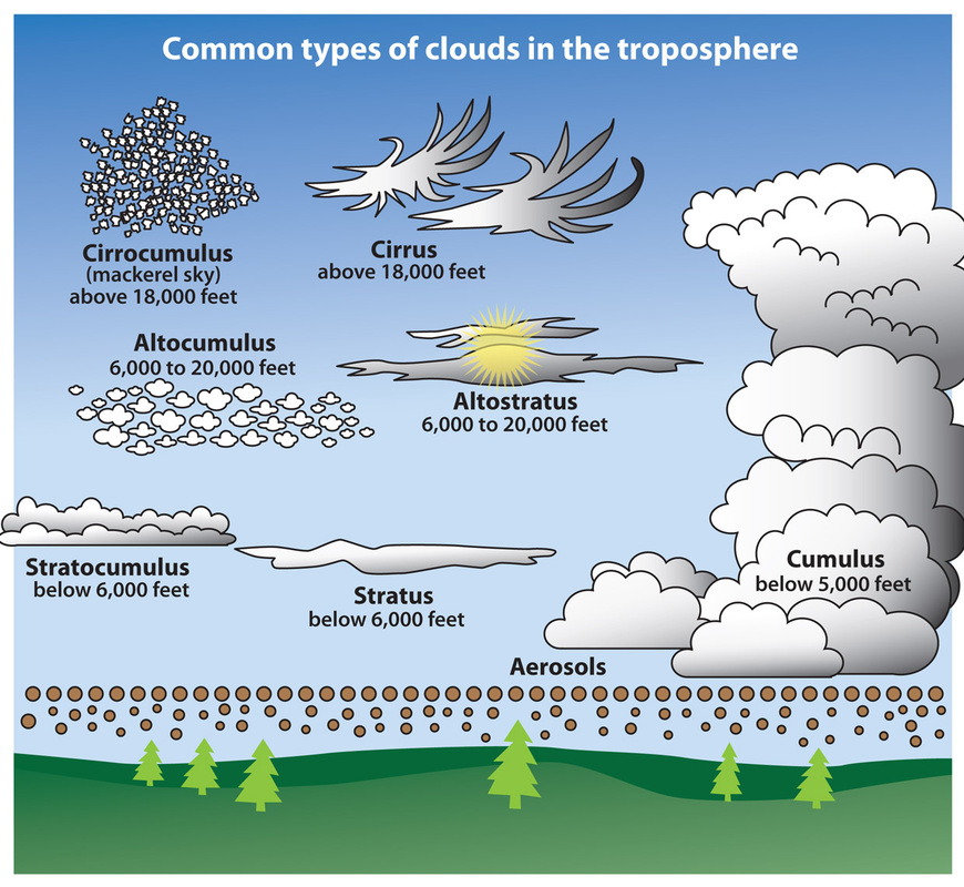 overview of cloud types what s that cloud rh whats that cloud weebly com Cumulonimbus Clouds 12 Different Types of Clouds